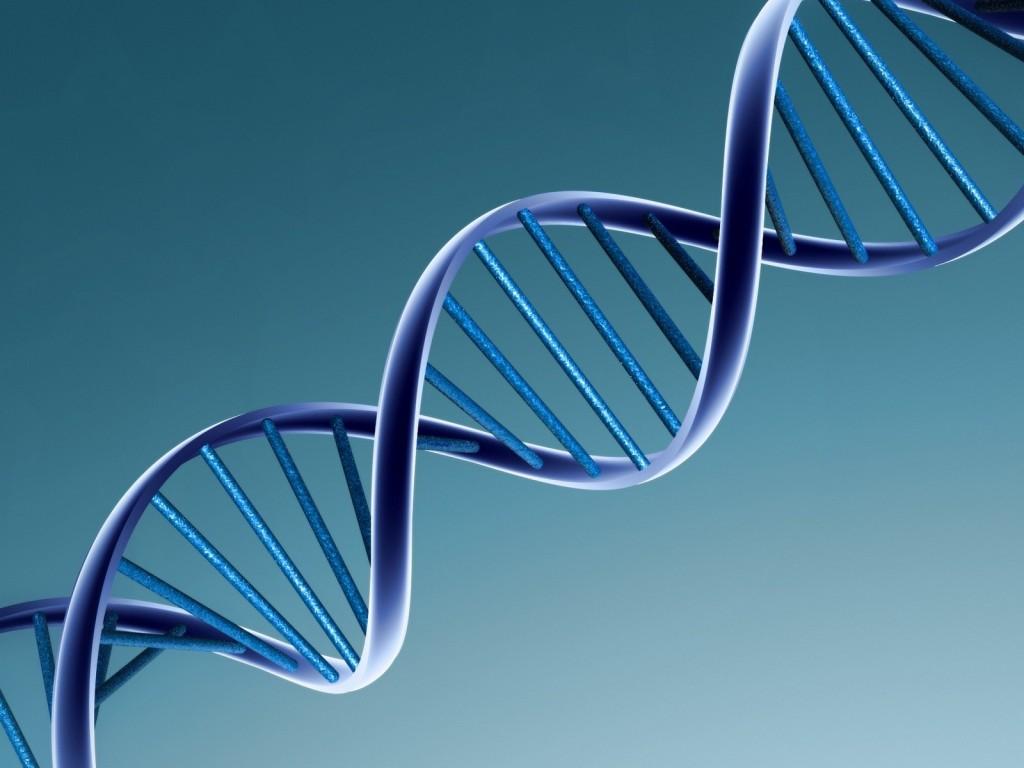 Massive DNA Hunt Begins…