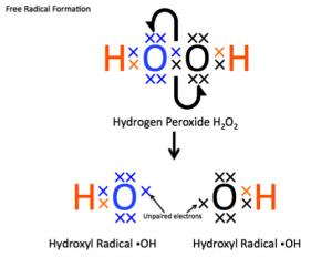 Hydrogen Peroxide Free Radical Formation (ys)